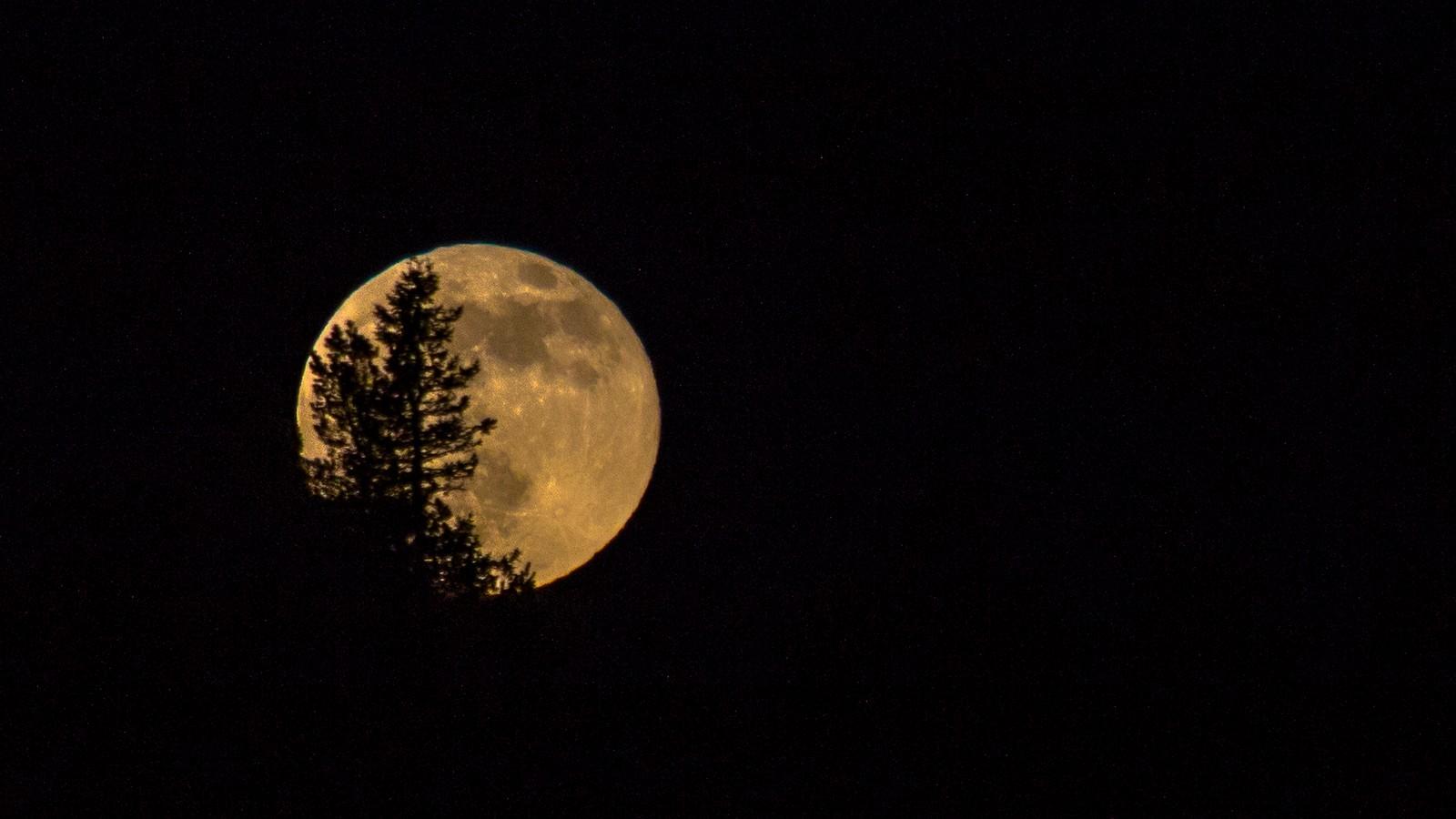 Måneoppgang i Meldal