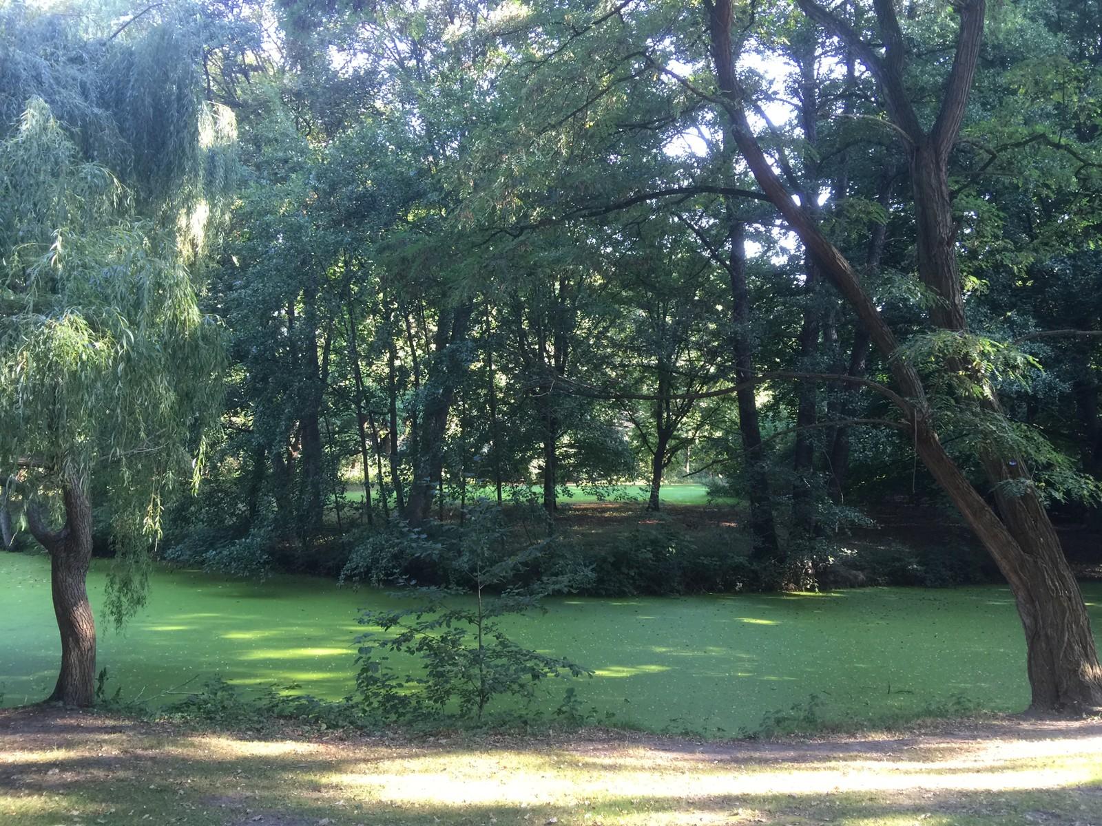 STOR. Tiergarten er med sine 210 hektar en av verdens største byparker. Til sammenligning er Hyde Park i London på 125 hektar, mens Central Park i New York er noe større, 335 hektar.