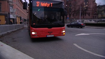 37-bussen