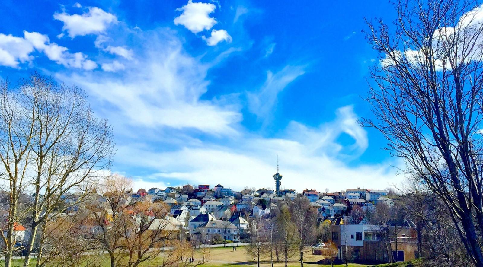 Første mai i Trondheim