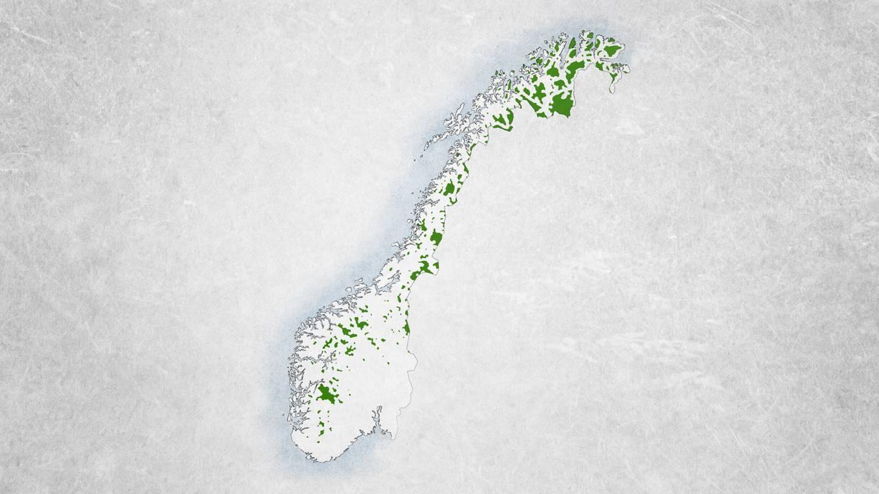 Bare små flekker av kartet er dekket av villmark i 2018.