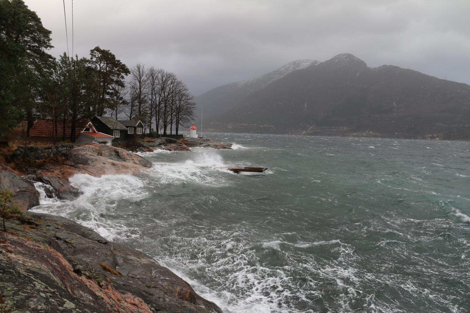 FRISKT: Vikingnes i Hardanger fredag ettermiddag.
