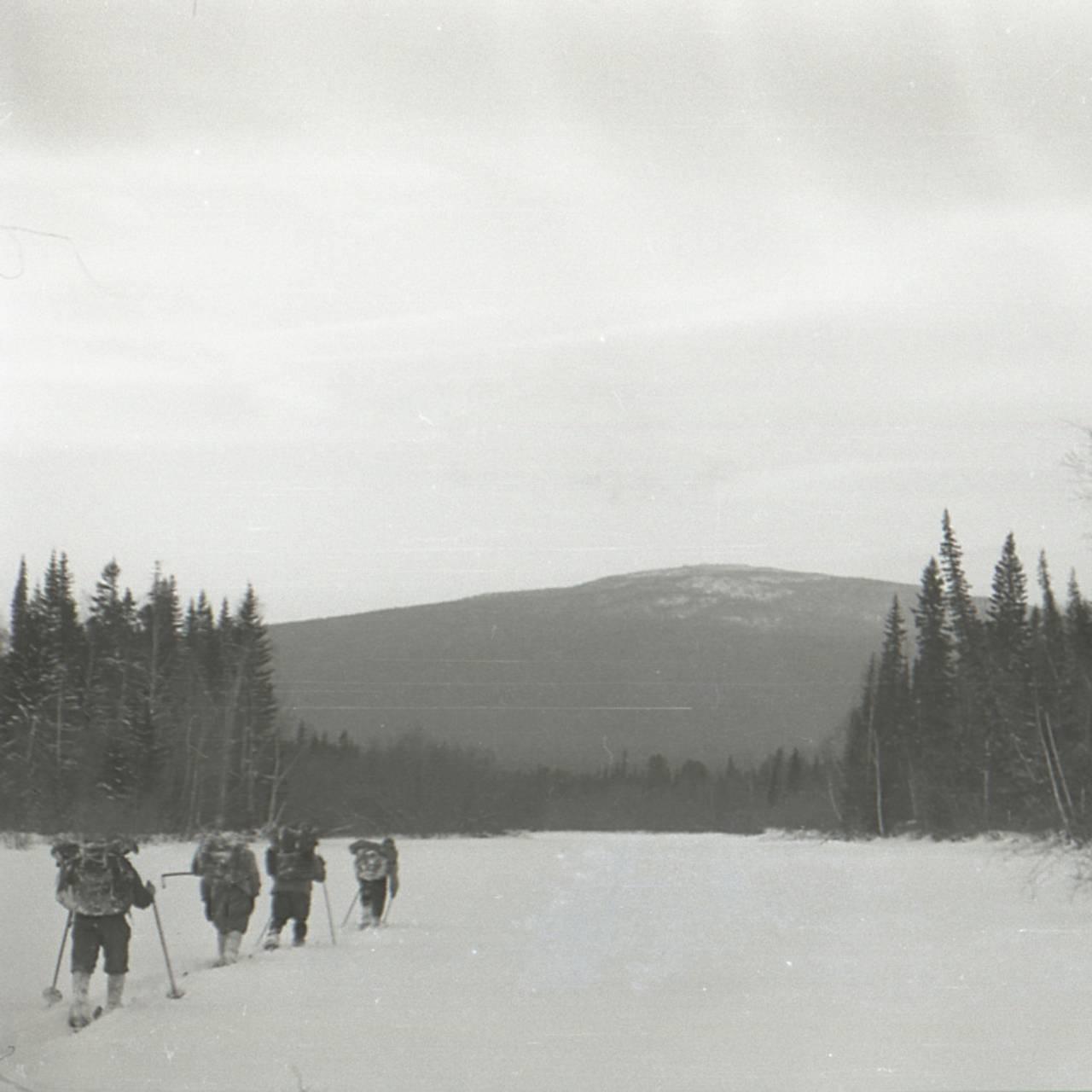 Gruppa går på ski