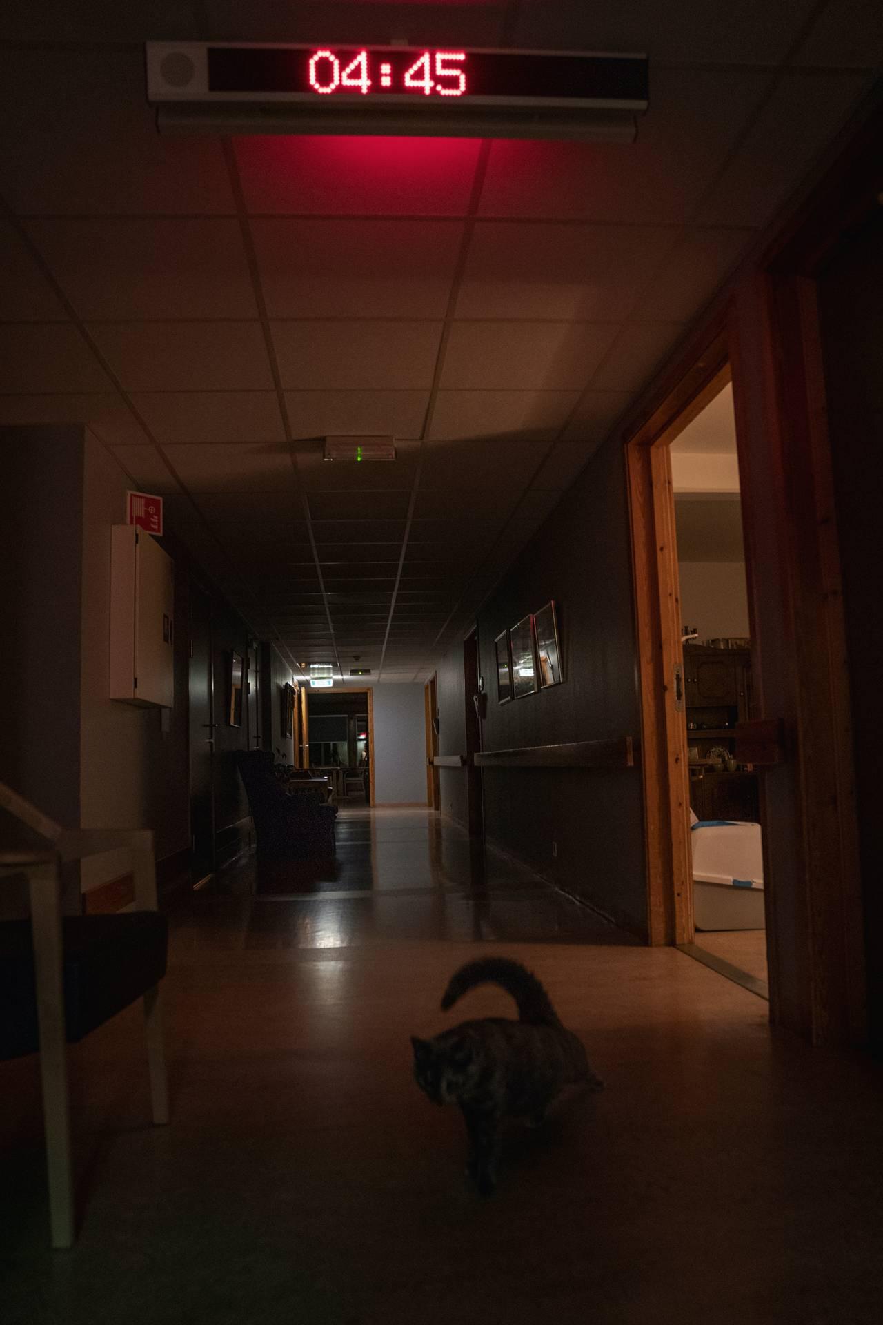 En mørk korridor på Silurveien sykehjem. Kun opplyst av et rødt digitalt klokkeskilt som viser tiden 04:45. I lysglimtet fra en åpen dør strekker terapikatten på avdelingen på potene.