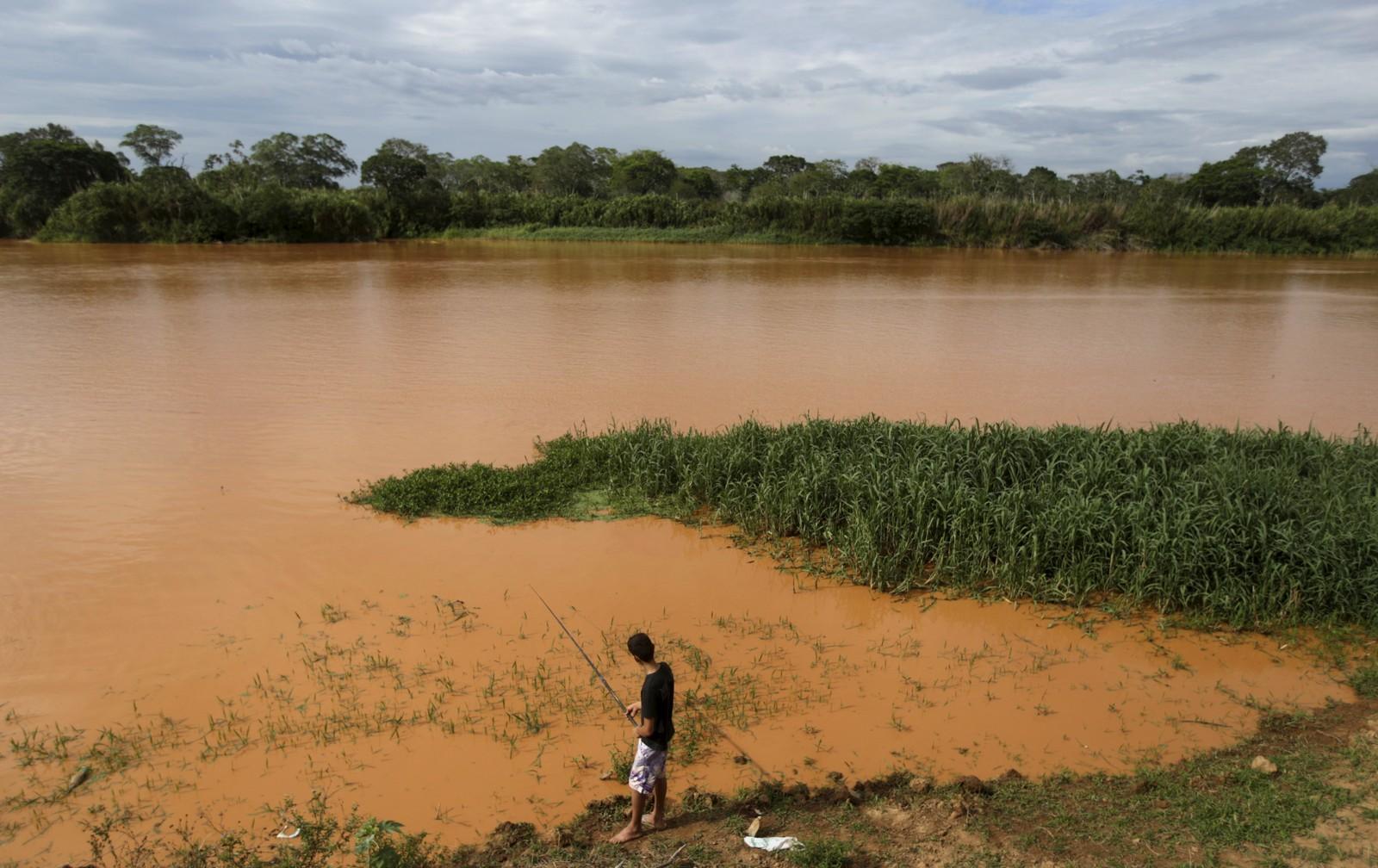 Ein innbyggar fiskar ved Rio Doce, som er full av gjørme etter at to demningar brast for to veker sidan.
