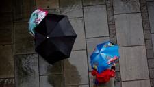 Regn i Oslo - Foto: Berg-Rusten, Ole/NTB scanpix