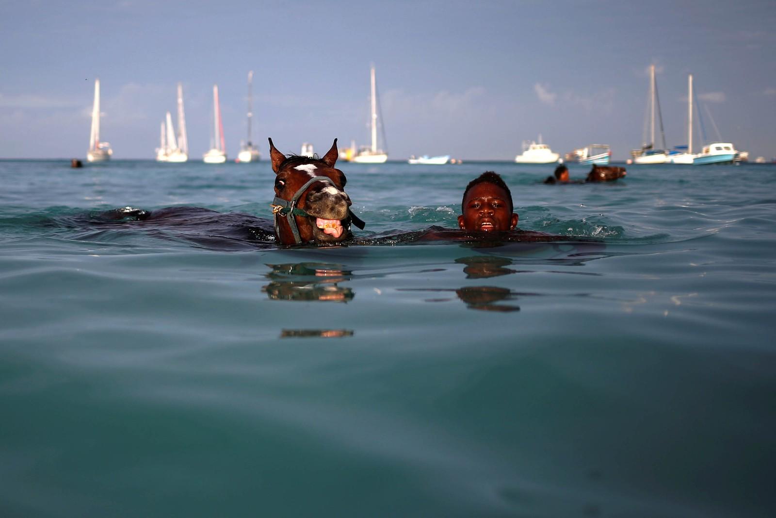 På svømmetur utenfor Bridgetown i Barbados.