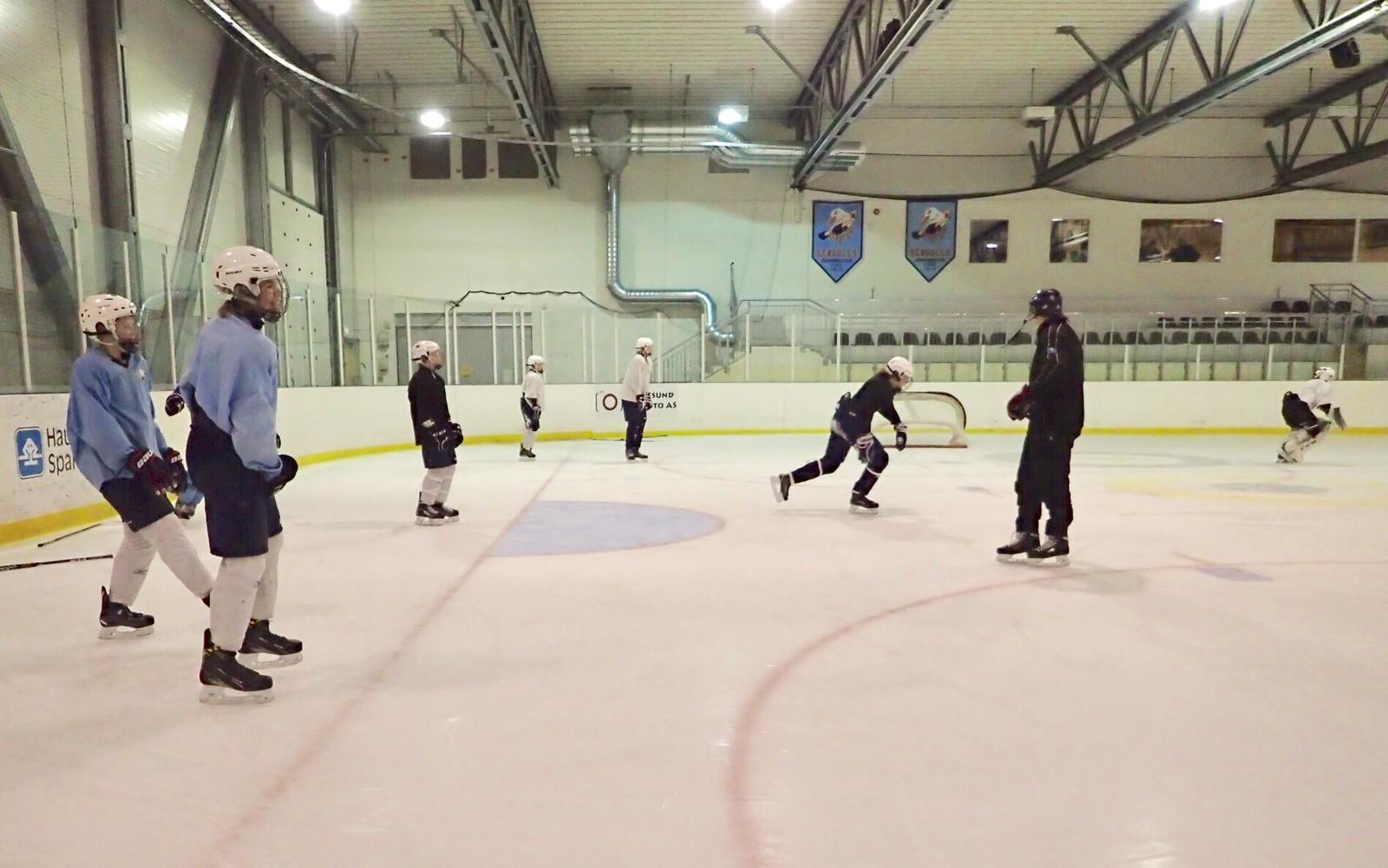 Haugesund ishockeyklubb