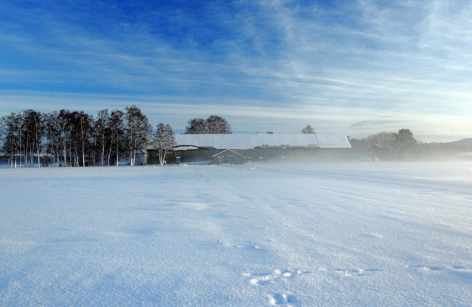Mot Fæby gård i Verdal