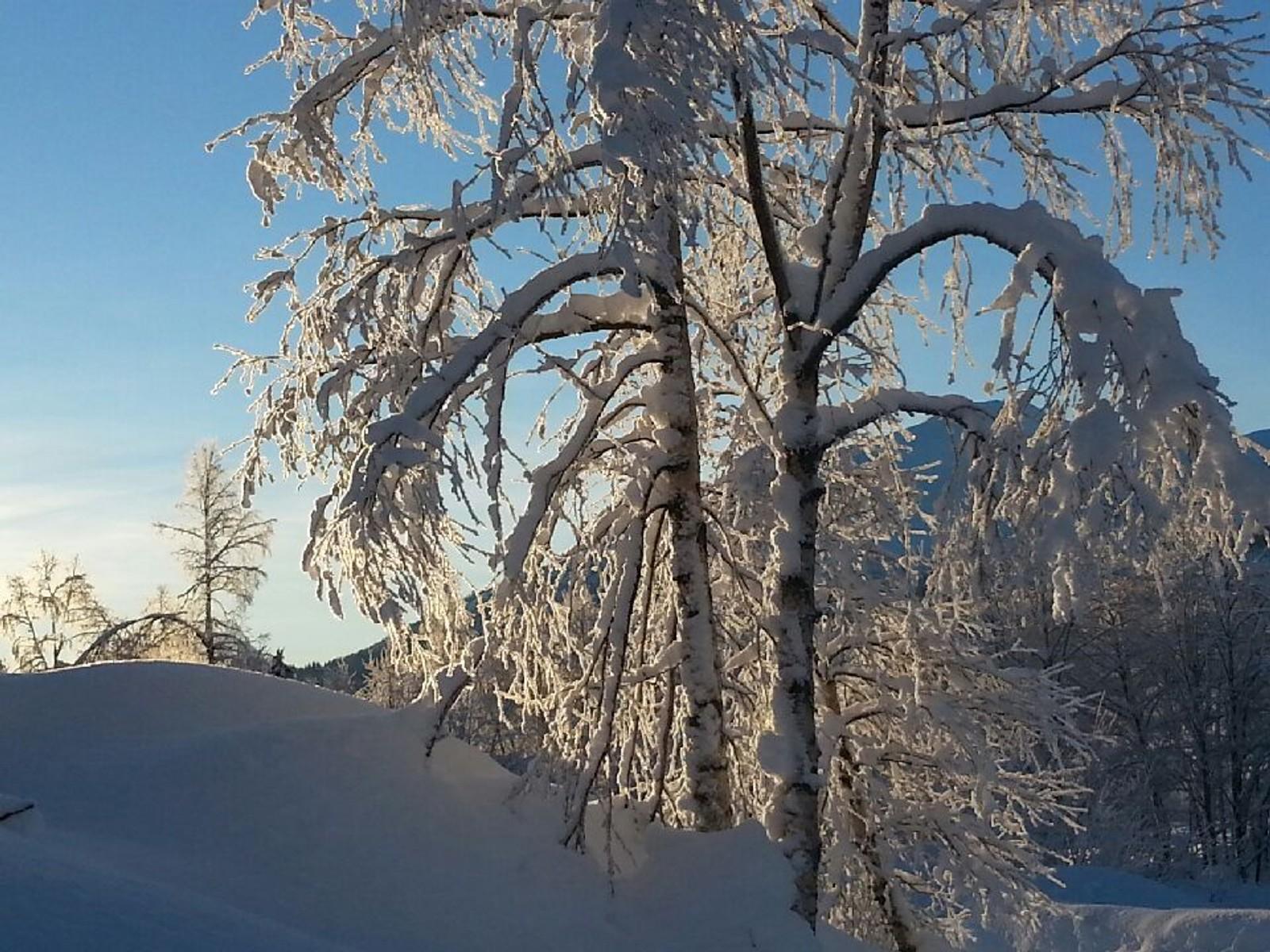 -22,9 grader på Kleiv i Sogndalsdalen 1. juledag