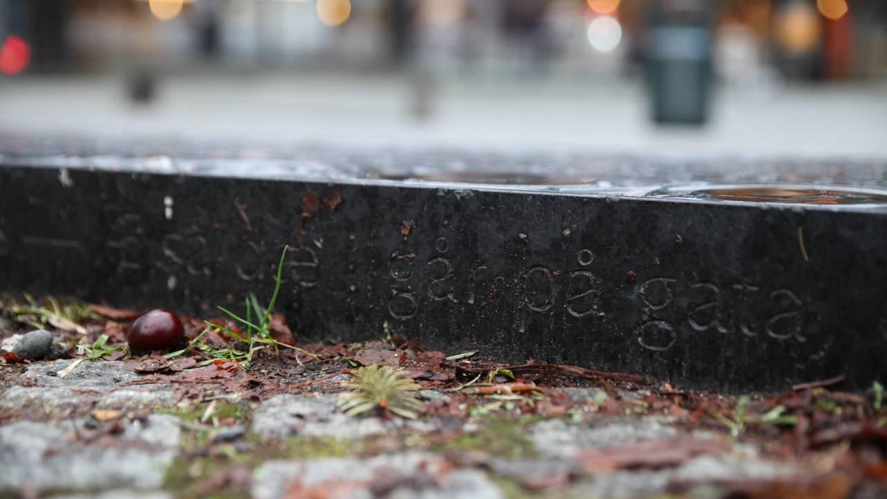 Æ så dæ i går på gata, sitat fra Sommerfuggel i vinterland