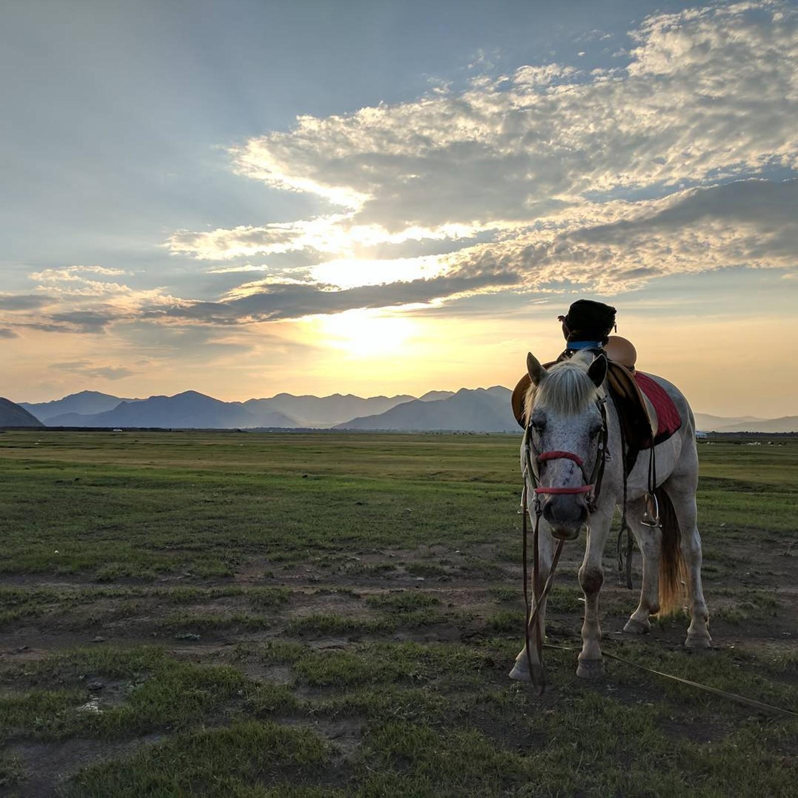 Eirik Gulsrud Johnsen - Mongolia