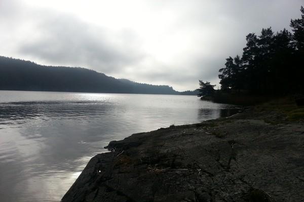 Sydover langs vannet - Foto: Steinar Skilhagen