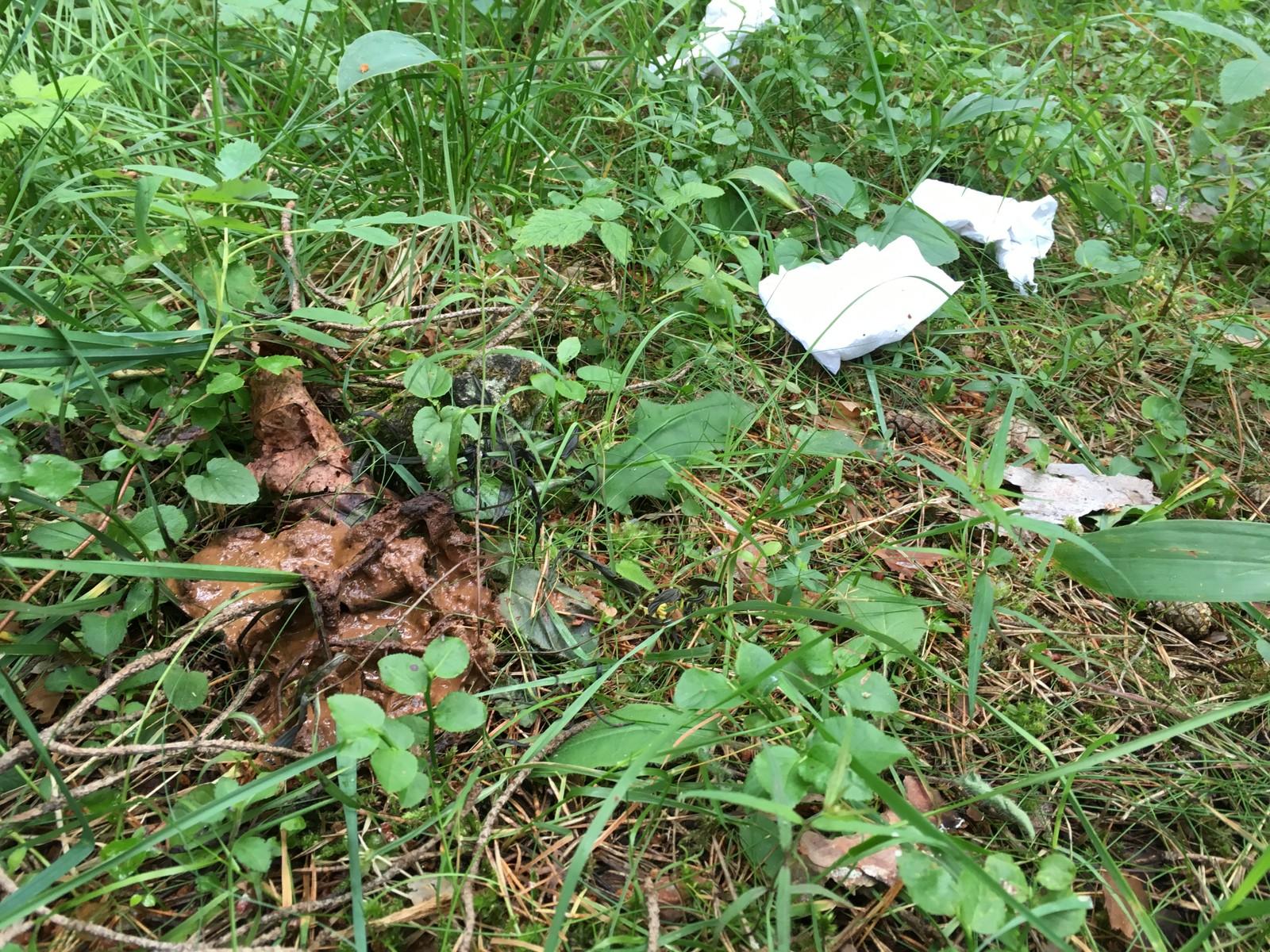 AVFØRING: Tidligere i år truet Botanisk hage med å stenge på grunn av menneskeavføring, også i Ekebergskogen gjør folk fra seg.