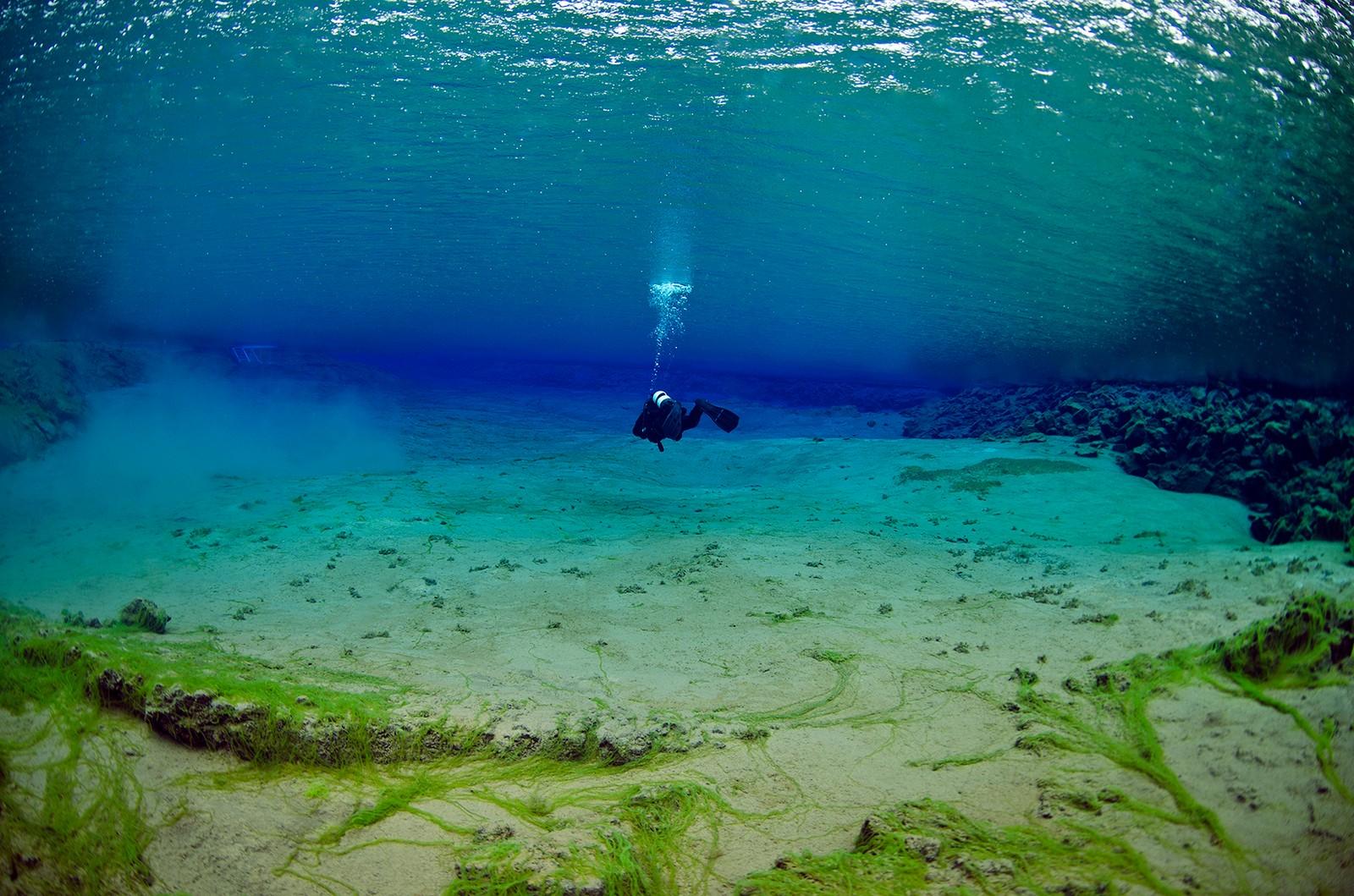 Lagunen i vannet Þingvellirvatn, i det man kommer opp fra kontinentalsprekken på Island