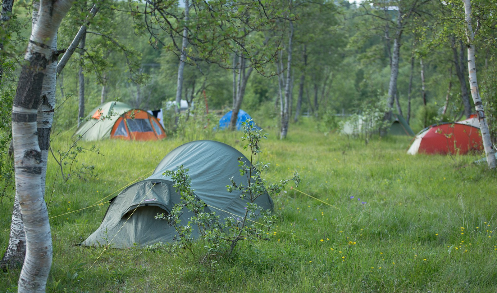 Torsdag er den offisielle åpningen av festivalen, og det har begynt å samle seg telt på Riddu-sletta i Manndalen.