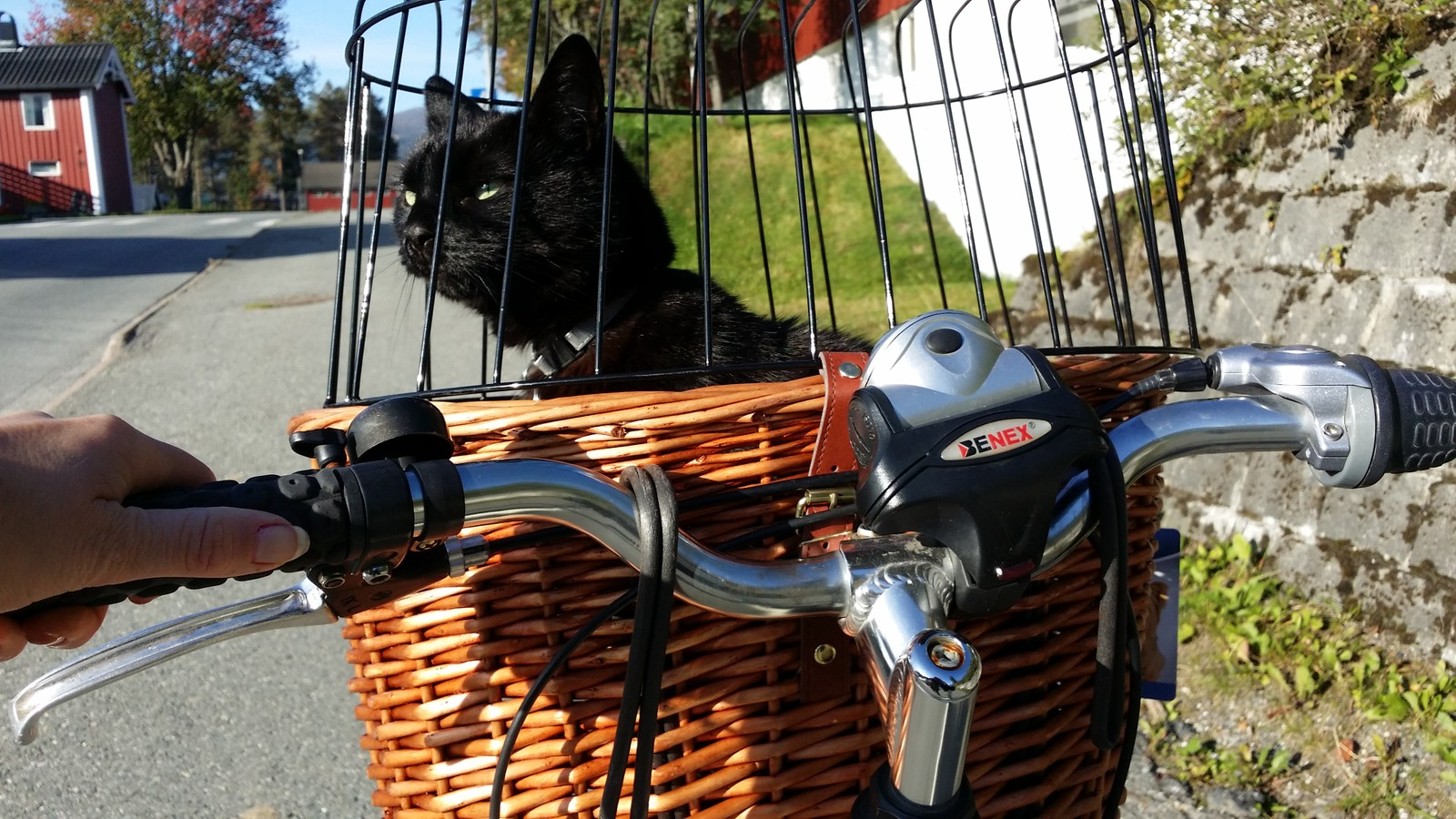 På sykkeltur..