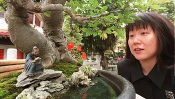 Hongkong bonsai