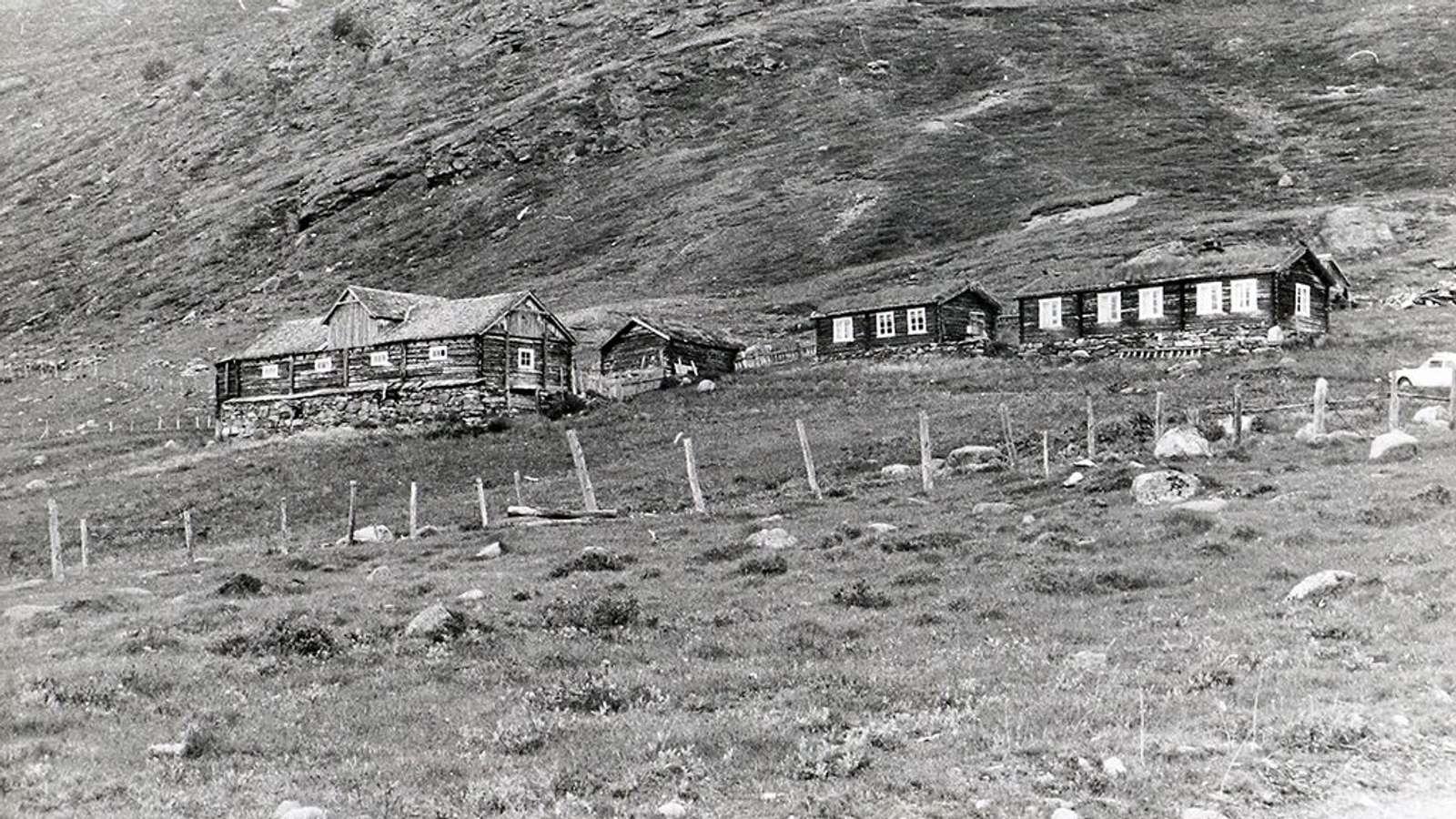 Seterbygningane ved Besstrond i Sjodalen i Oppland var omringa av steinur og låg lyng i 1969