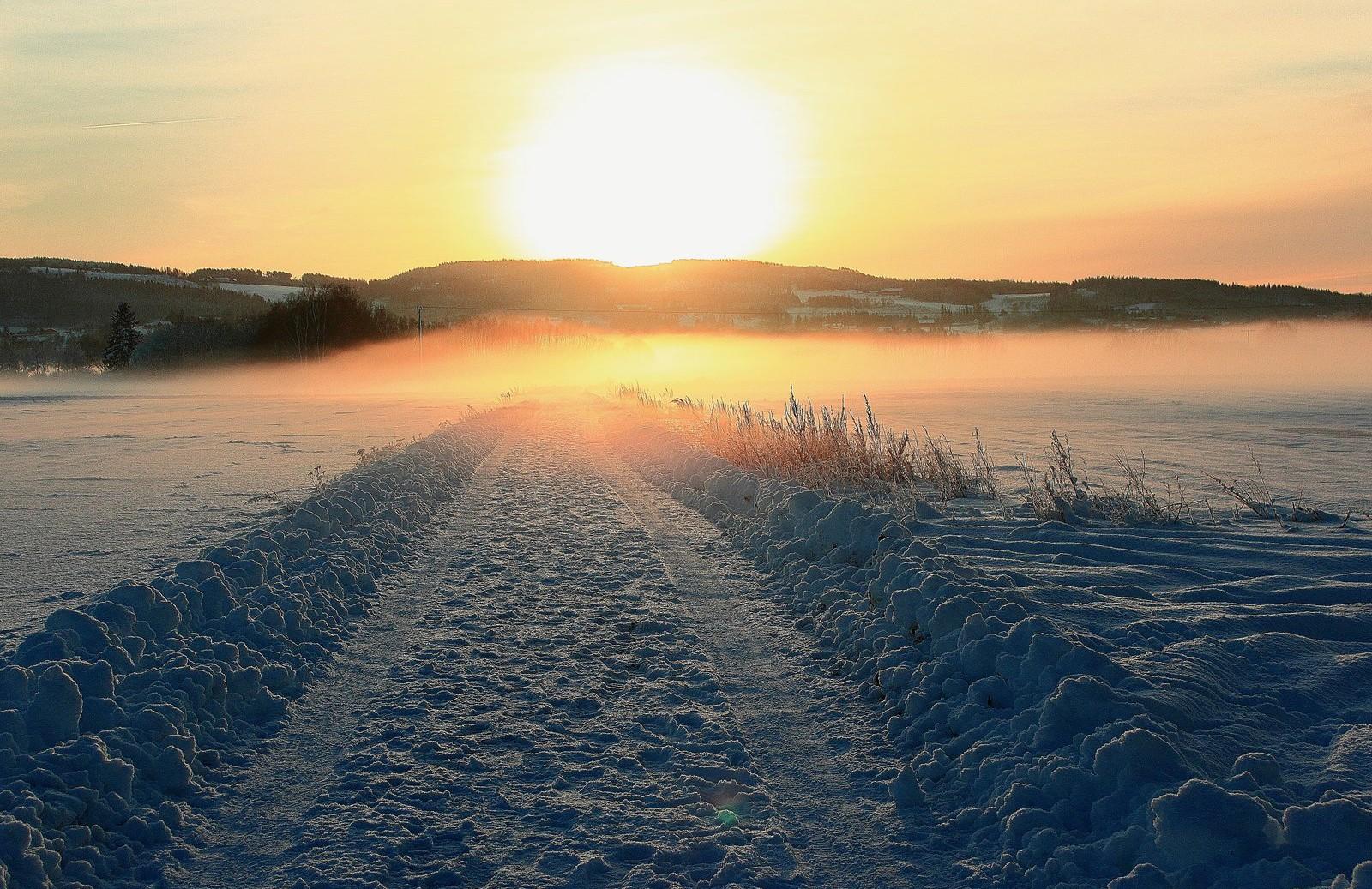Like før solnedgang på Fæbyenget i Verdal