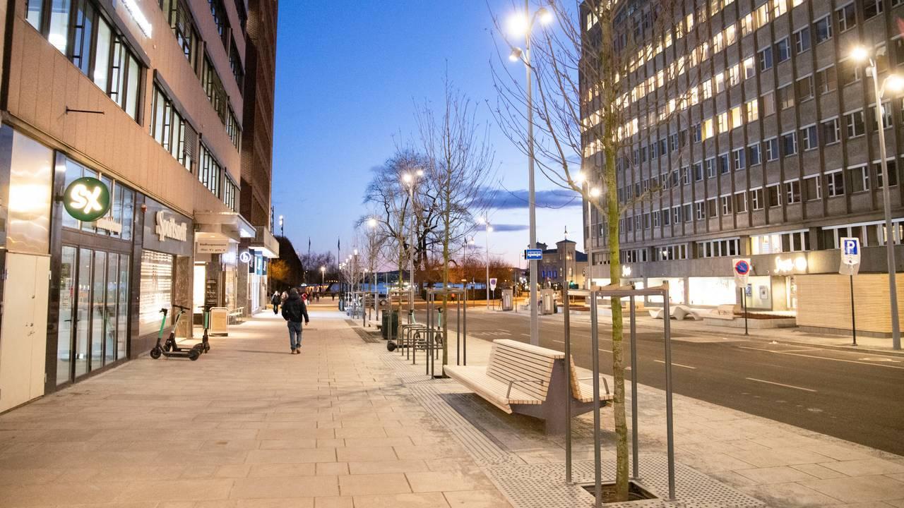 De nye trærne i Olav Vs gate i Oslo sentrum.