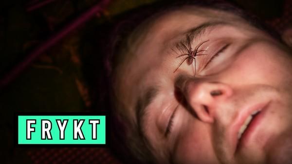 Hvorfor er vi redd for noen dyr, og har vi grunn til å være redd dem? Ludvig møter noen utvalgte norske insekter og dyr, og tester hvor farlige de egentlig er.