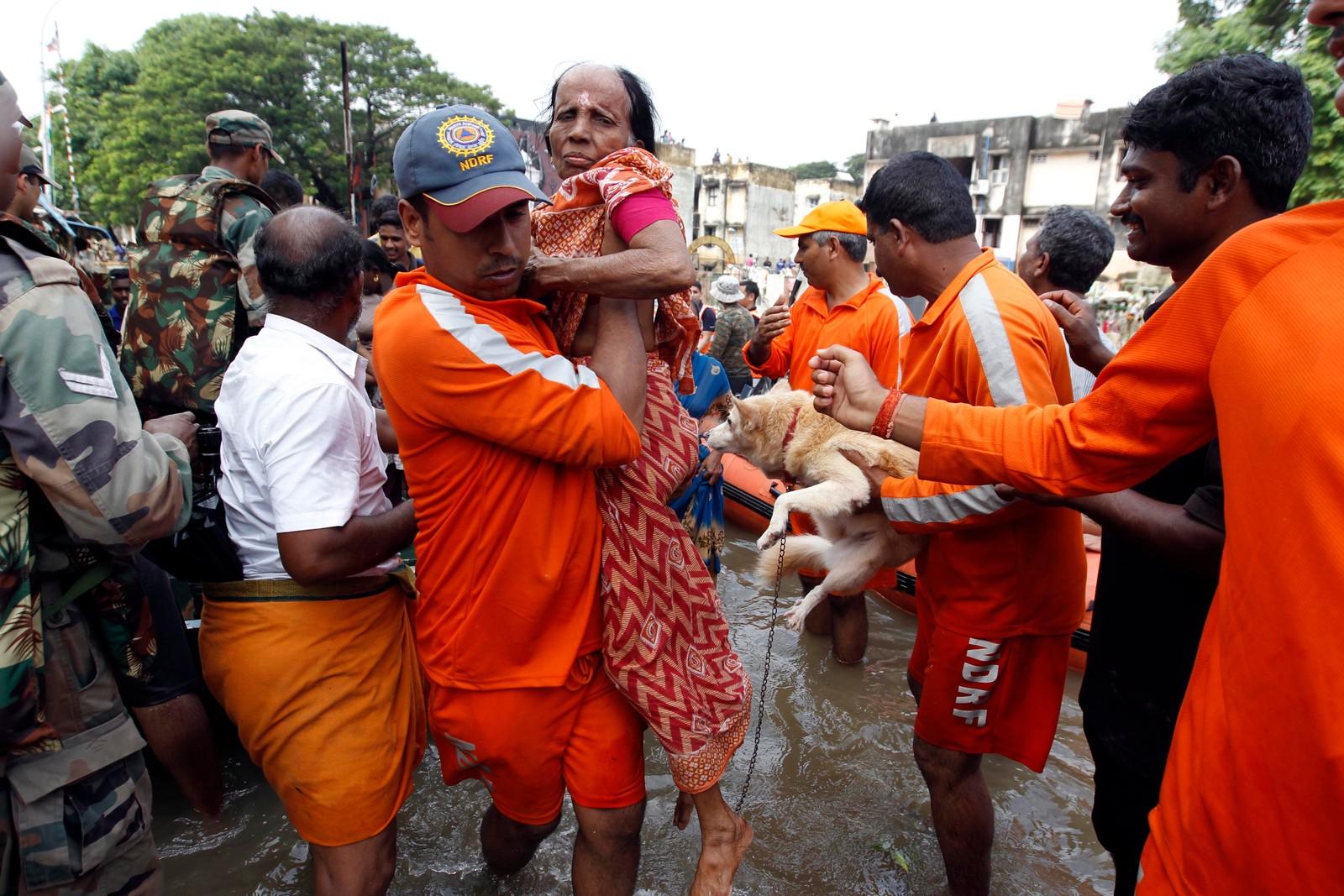 Den nasjonale kriseberedskapen redder en eldre kvinne og hennes hund fra flomvannet. Dette er det kraftigste regnfallet på hundre år i delstaten Tamil Nadu i India.