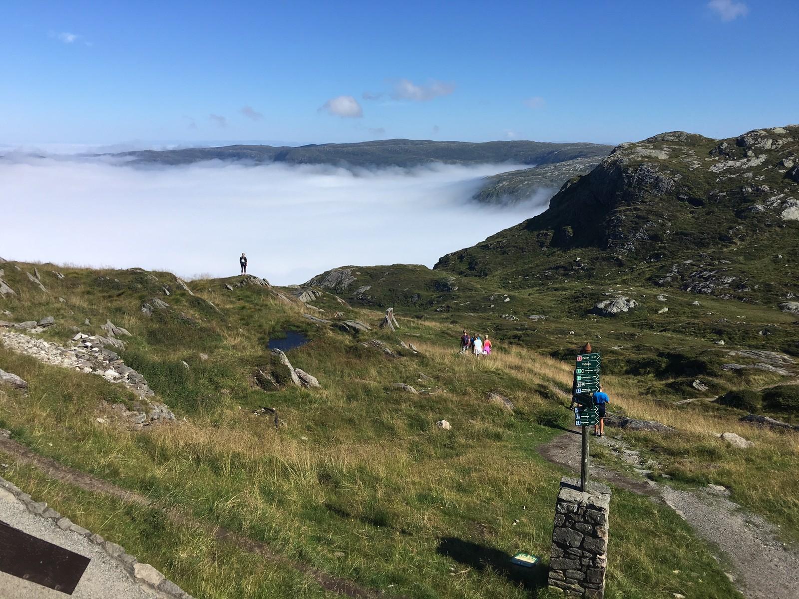 VIDDEN I SOL: Mens tåken lå over Bergen, badet Vidden i strålende formiddagssol.