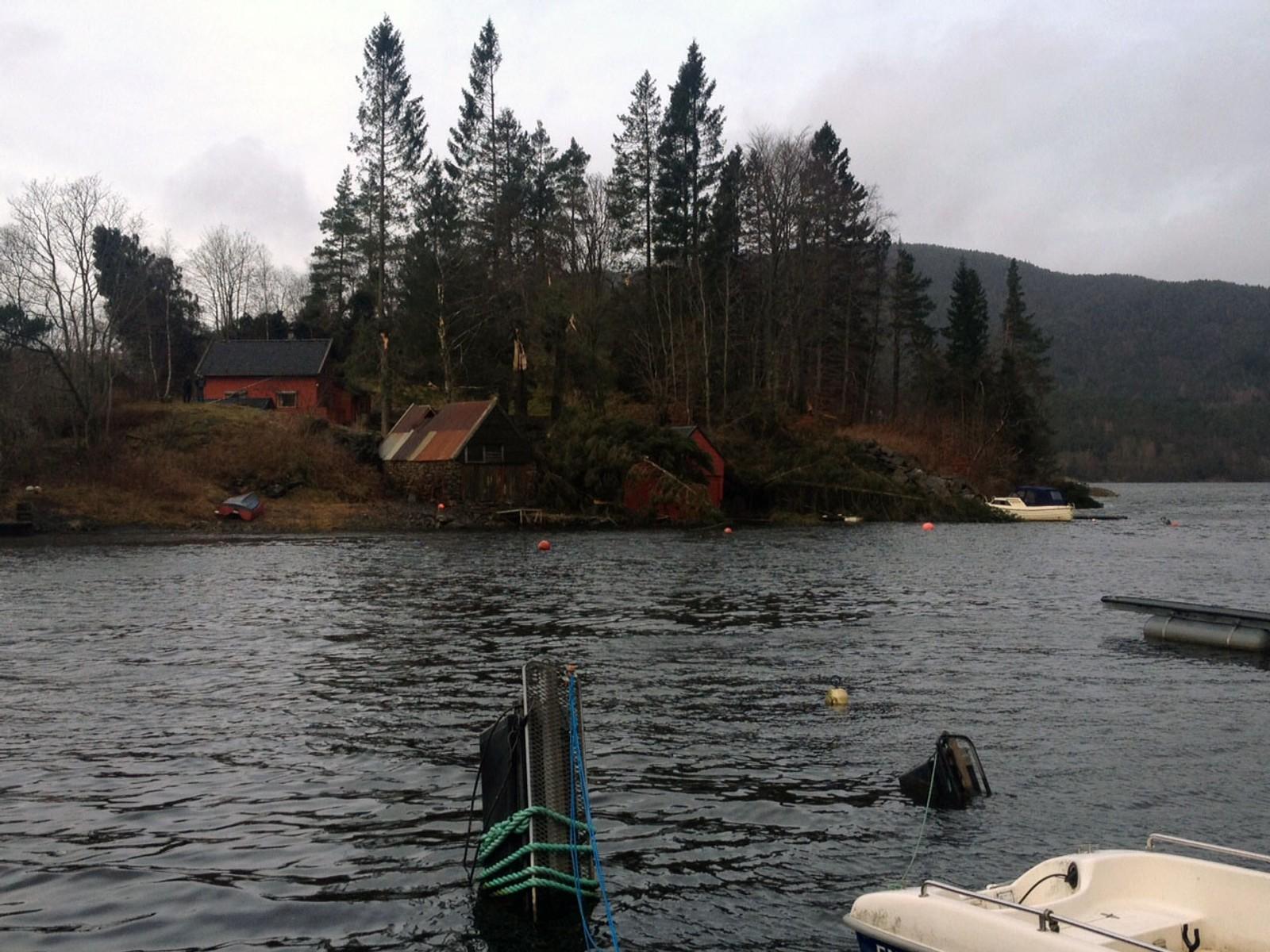 Ekstremværet «Nina» herjet voldsomt med trær og nøst ved Nordåsvannet i Bergen.