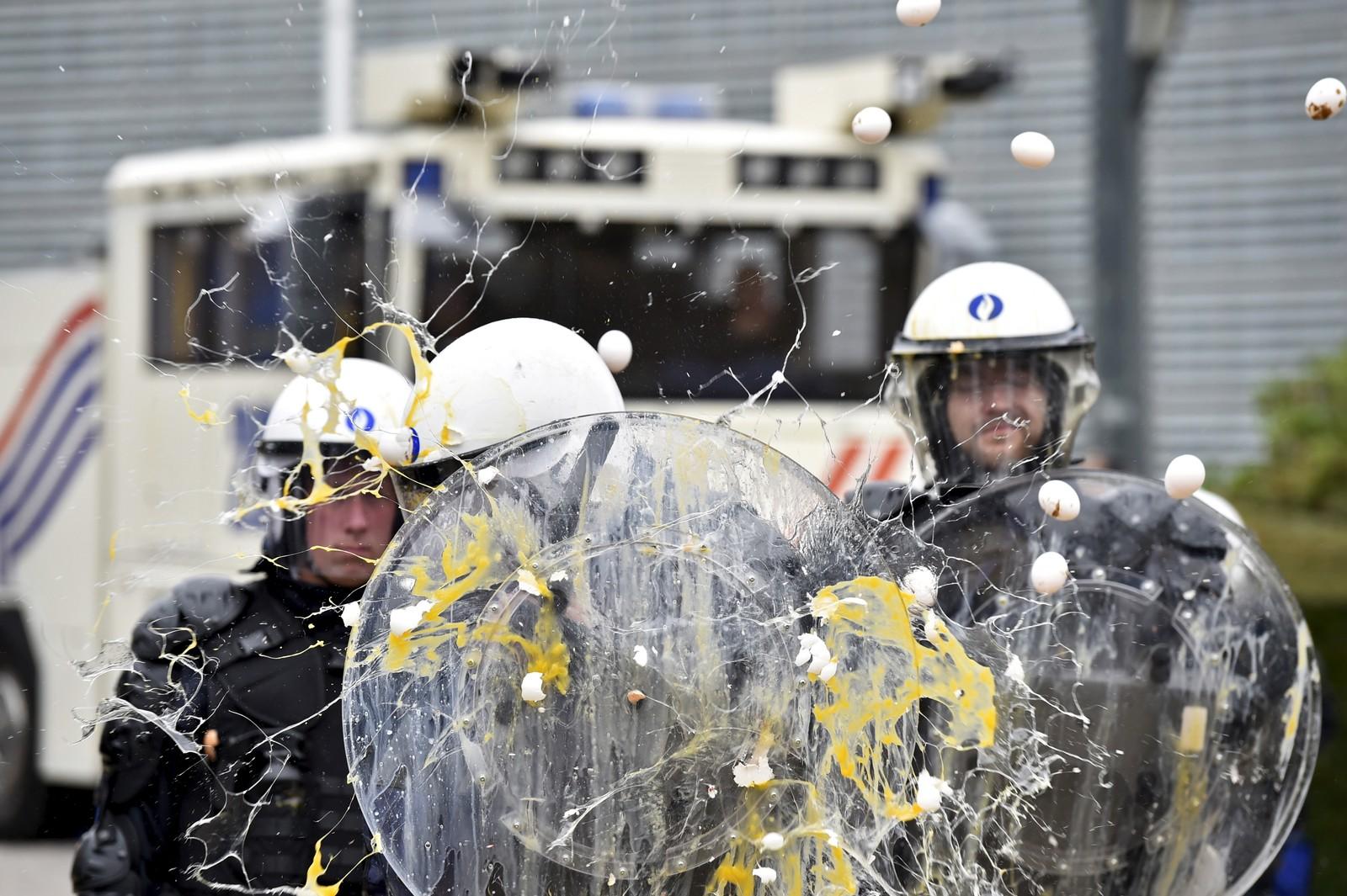 Europeiske bønder kaster egg på politiet i Brussel under en demonstrasjon 7. september.