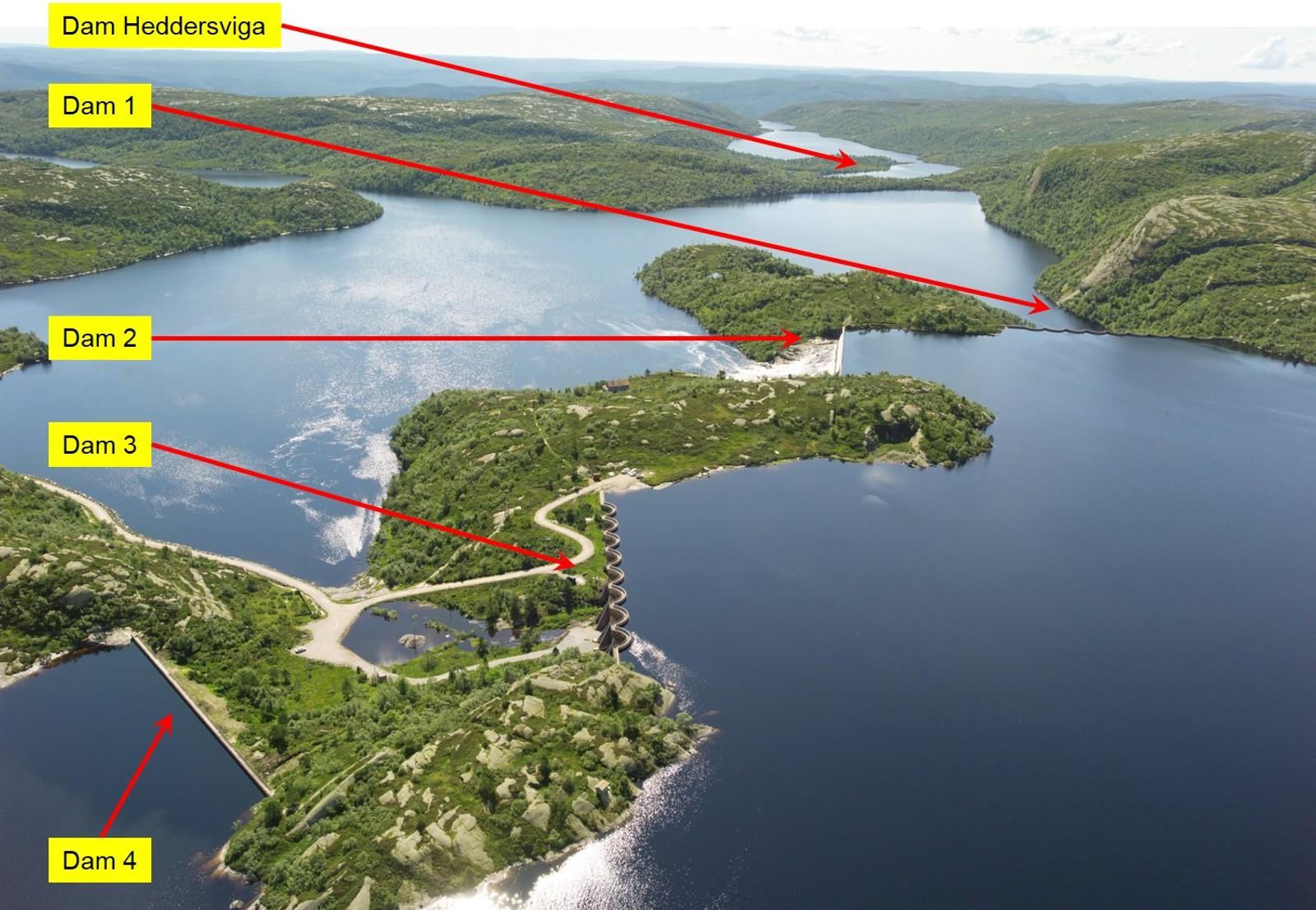 Fem dammer Åseral kommune