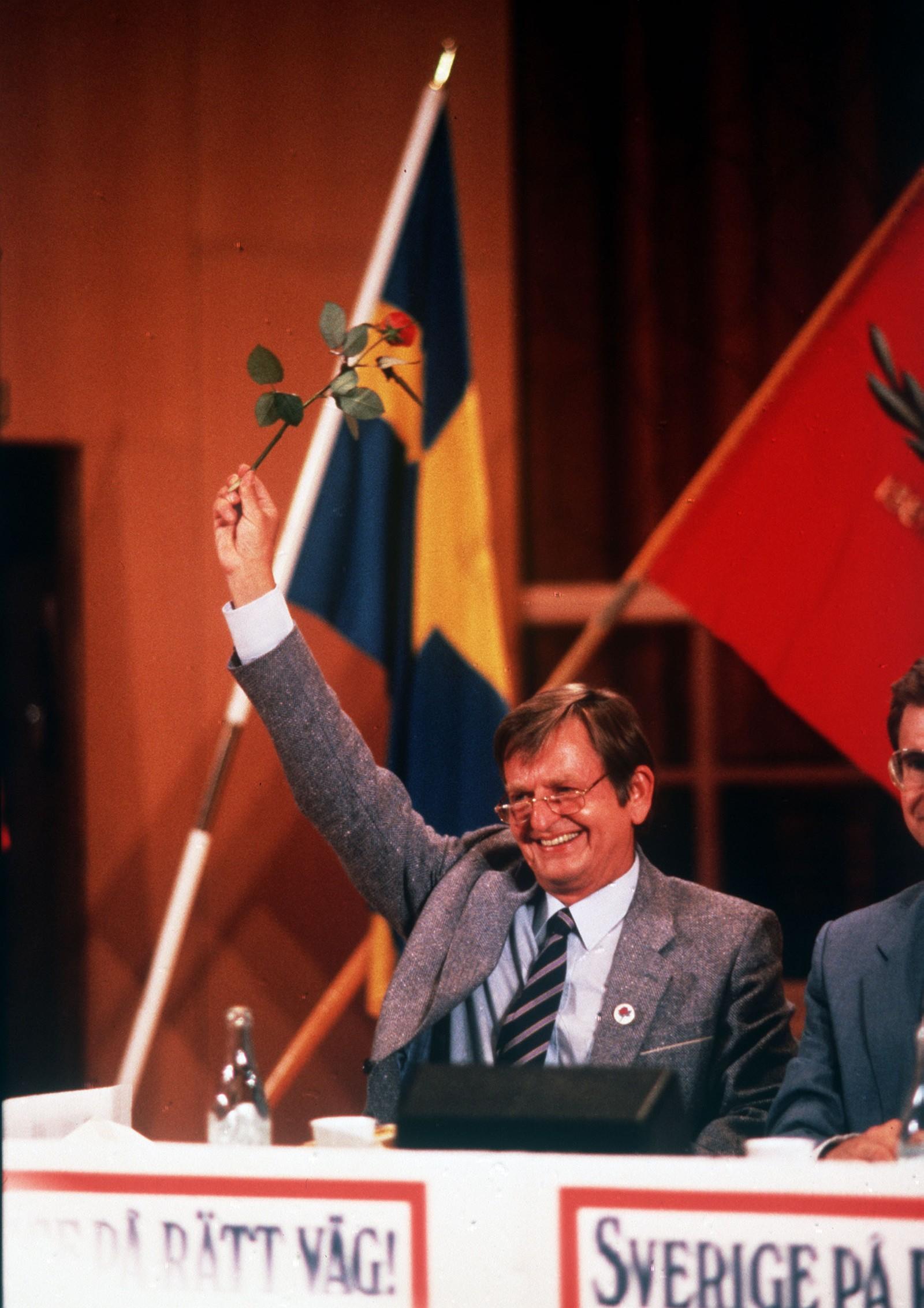 Sosialdemokraten Olof Palme vifter med en rose 28-08-1985.