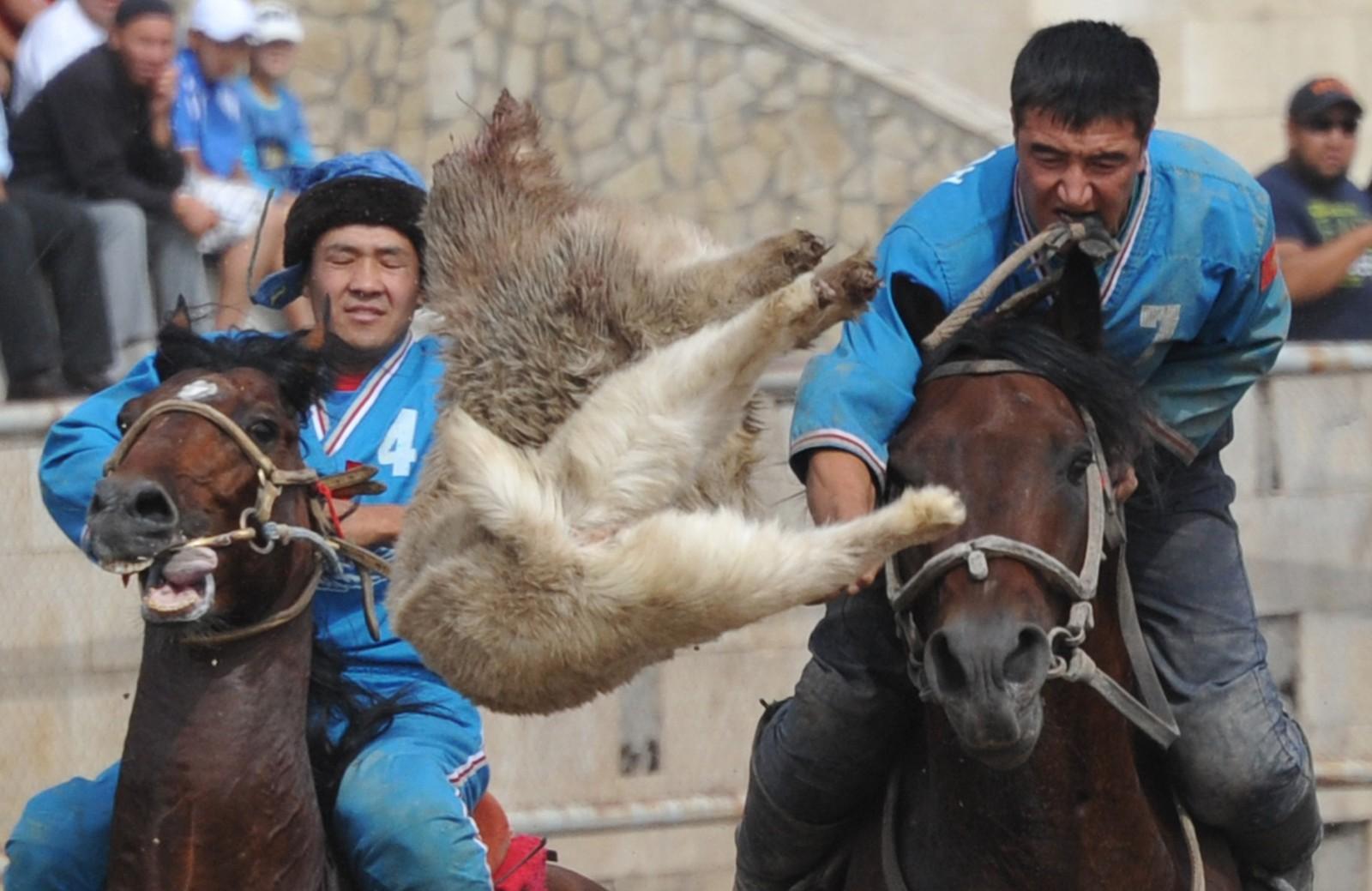 Et saueskinn skal kastes i en brønn i denne sporten ofte kalt Buzkashi. Rytterne konkurrerer i sporten som en del av Kirgisistans uavhengighetsfeiring.