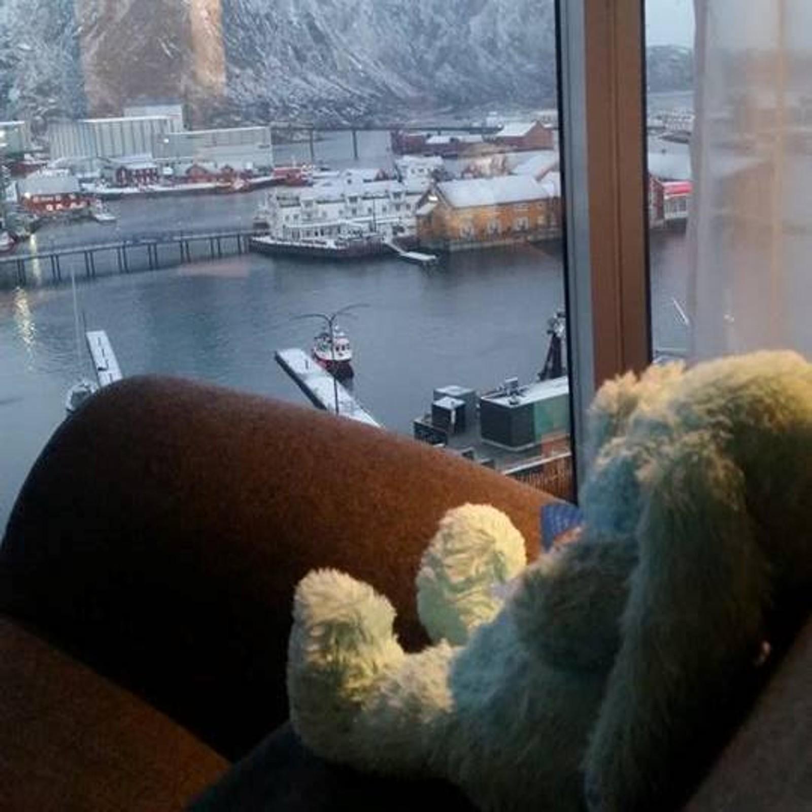 Hotellet har laget en hel liten historie rundt bamsen, som mange har funnet morsom.