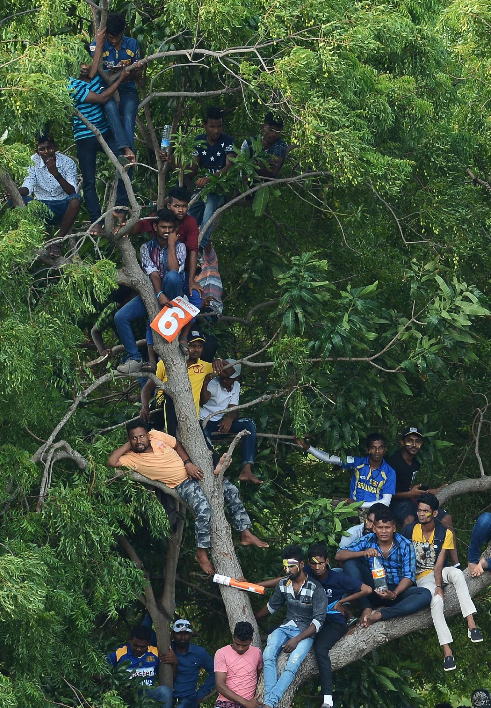 Voldsom interesse for cricket-kampen mellom Sri-Lanka og India forrige søndag. Det spilles fem kamper og i skrivende stund leder India 2-0.