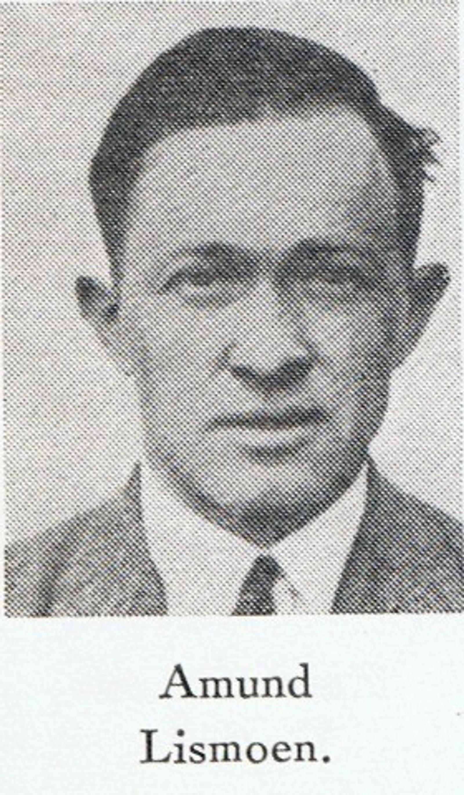 Amund Lismoen: Bilmekaniker fra Grue. Var på veg for å slutte seg til de norske styrkene da han døde under flyangrepet.