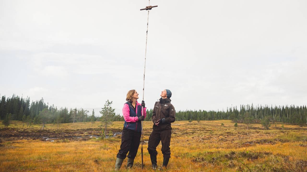 Et ultratotalt usnitt av Marte Fandrem og Magni Olsen Kyrkjeeide som står på en myr, og ser opp mot håndtaket på stangen de har mellom seg, og som de har brukt for å måle dybden på myra.