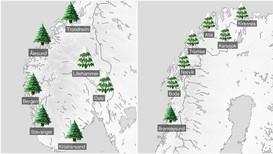SNØFATTIG KYST: Ifølge Meteorologisk institutt blir det truleg ikkje snø på julaftan langs kysten heilt frå Brønnøysund, via Vestlandet og forbi Sørlandet.