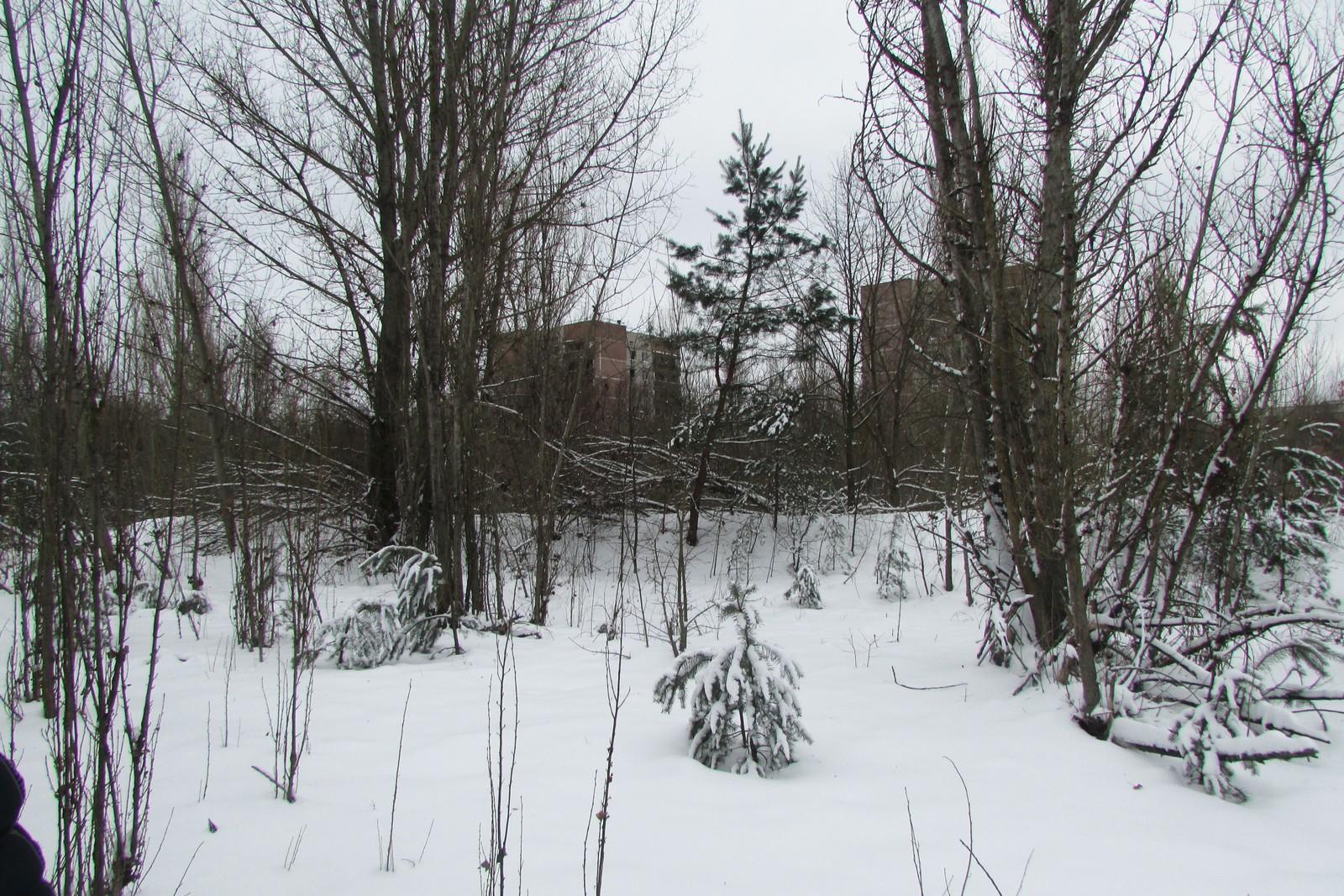 Vinterstid dukker Pripyat frem, der det meste ellers er gjemt bak løvtrærne.