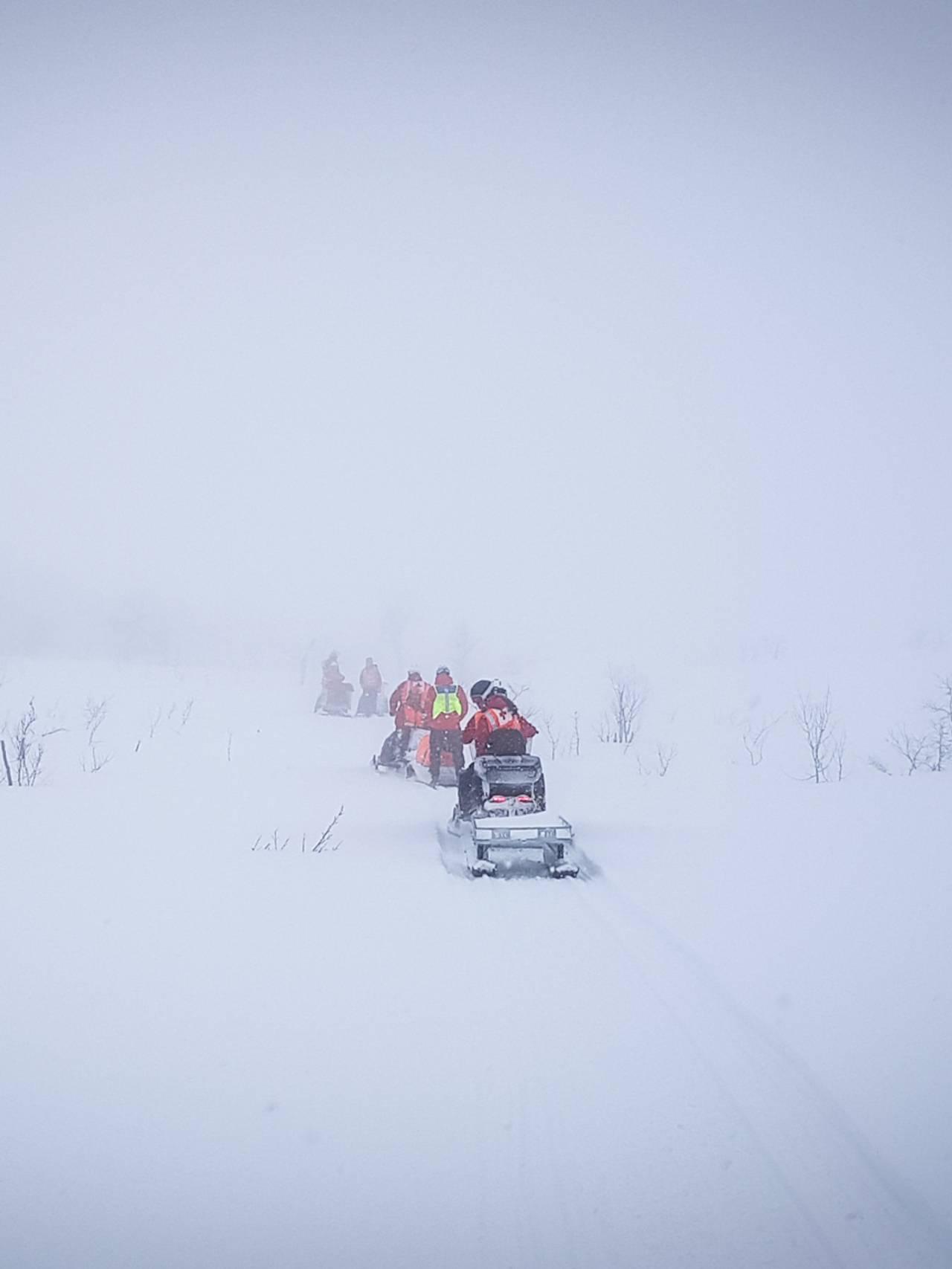 Leiteaksjon i Narvik