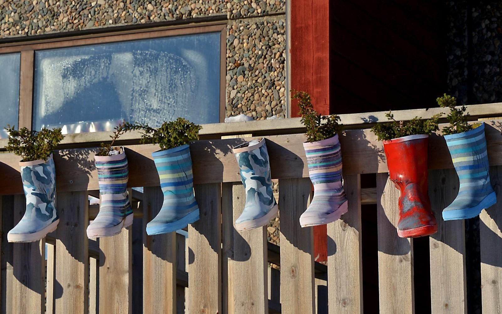 Bildet er tatt i Bø i Vesterålen.
