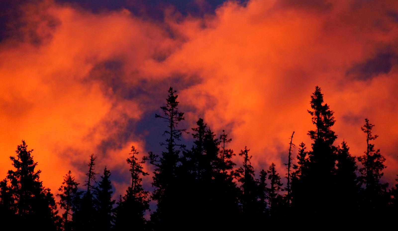 Himmelen i brann i Bårdlia i Åfjord