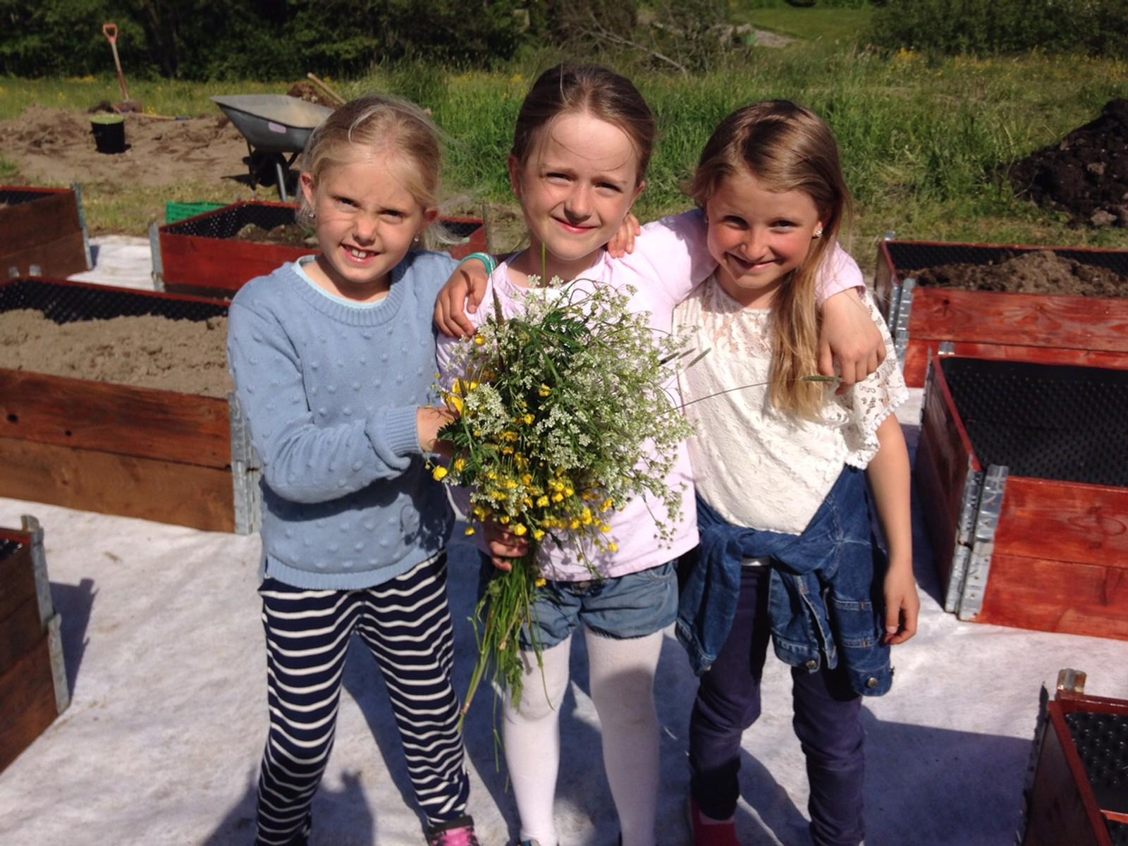 Bilde tatt i juni, av SFO-elever ved Trosvik skole. De planter ut det de har dyrket. Fra venstre: Ada Lundhaug Scau, Kaia Kjerre Ludvigsen og Tuva Kristine Anstensen.