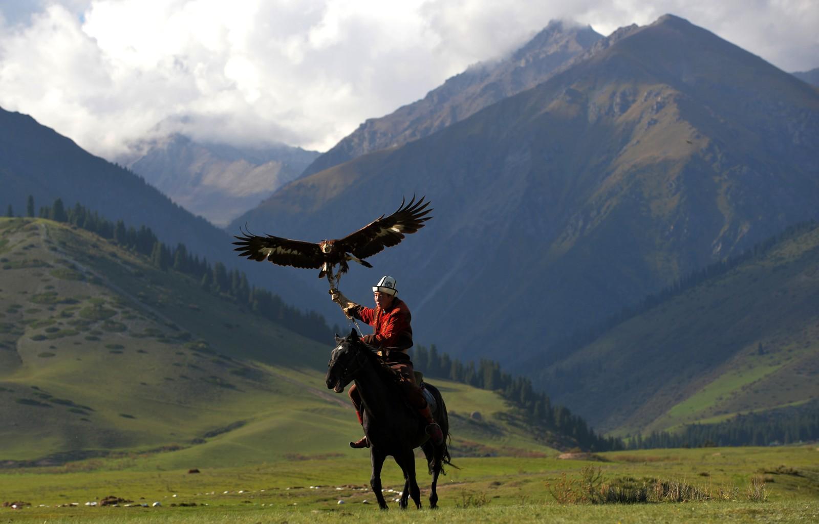 En kirgisisk ørnejeger med en kongeørn under VM i nomadiske leker. Bildet er tatt den 7. september.