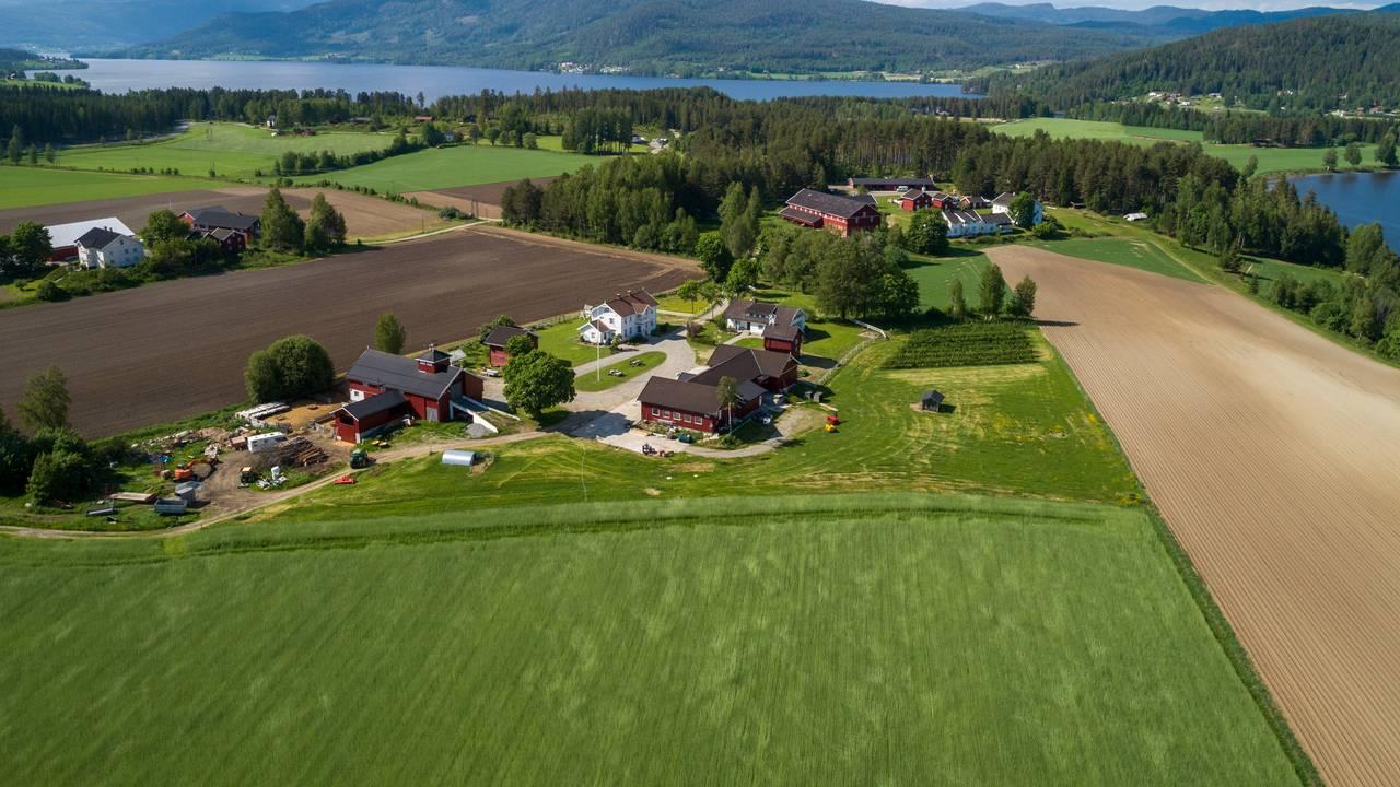 Dronebilde av Nedre Skinnes Gård
