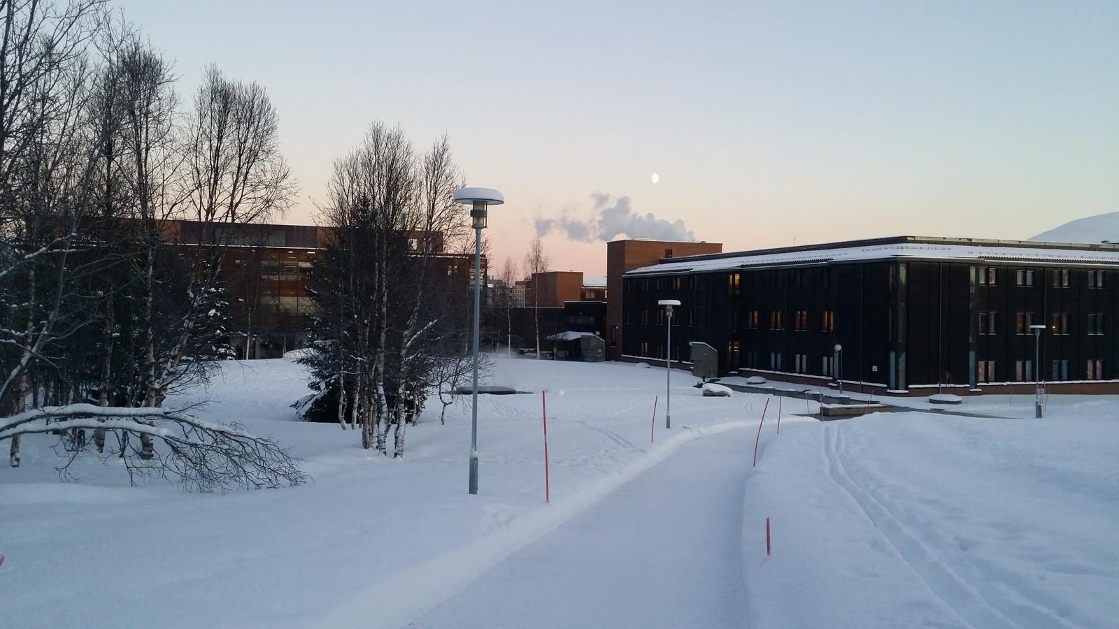 Universitetsområdet, Tromsø.