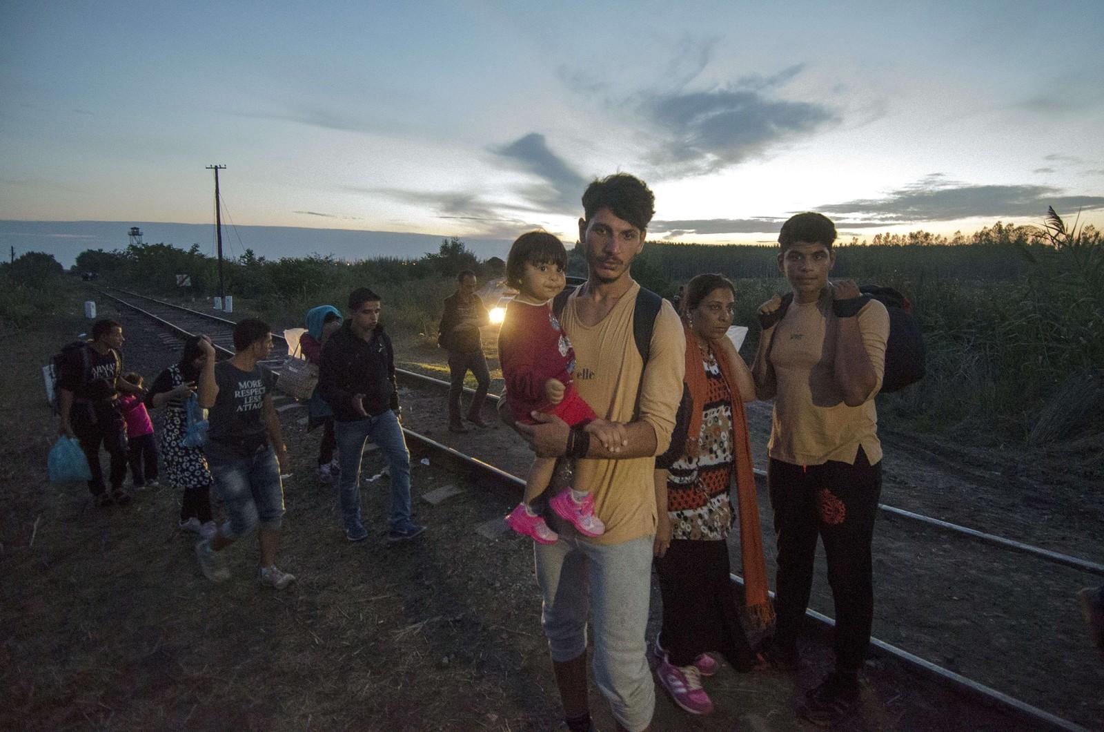 Mange av de som flykter fra krigens grusomheter prøver desperat å komme seg til Europa. Dette bildet er tatt i landsbyen Asotthalom ved den serbisk-ungarske grensen. Ungarn ferdiggjør i disse dager et gjerde som blir nok et hinder for flyktningene på veien mot EU.