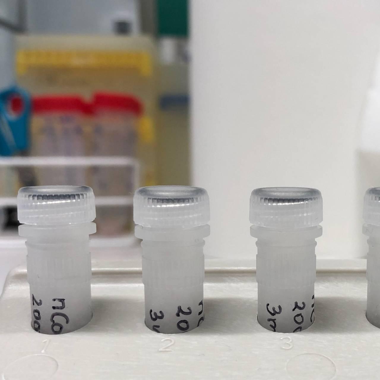 Vaksinekandidater, covid-19