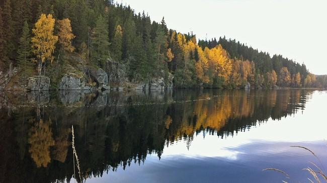 Løvtrærne skifter farge for hver dag som går, ved Nord-Fløyta på Holt ved Minnesund.  Foto: Mie Maria Sundberg