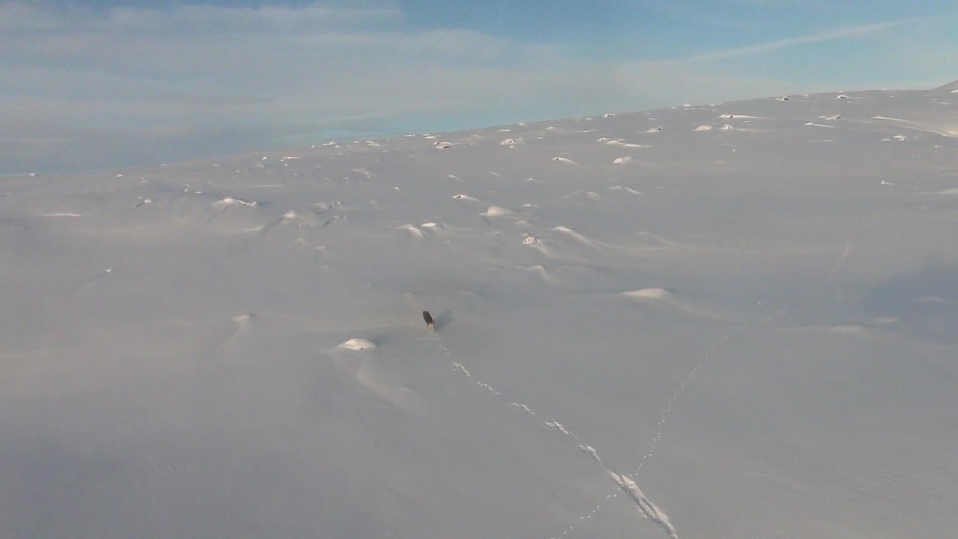 Ulvetilhengere roser SNO for profesjonell helikopterjakt